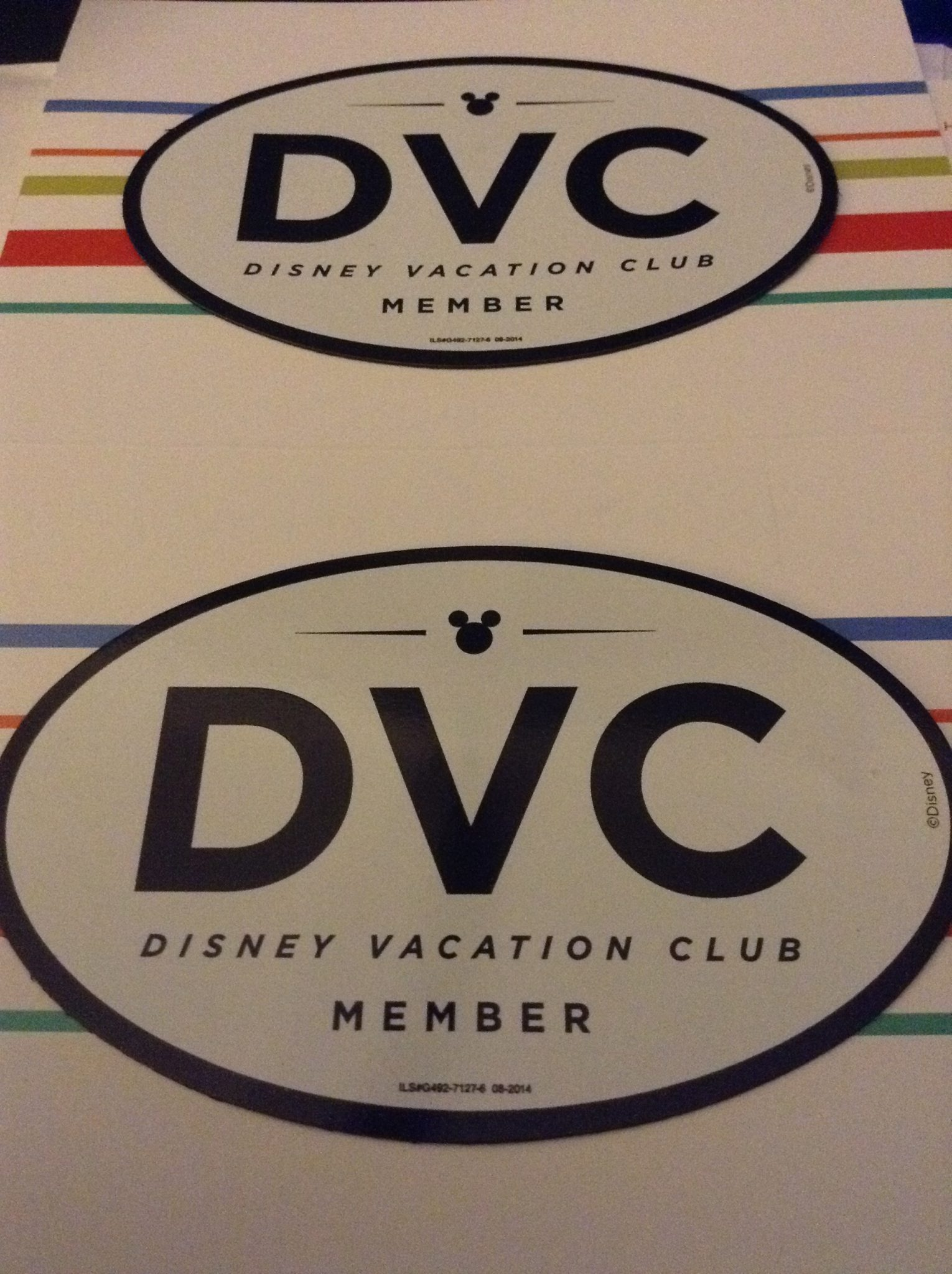 Why We Purchased DVC (Resale)