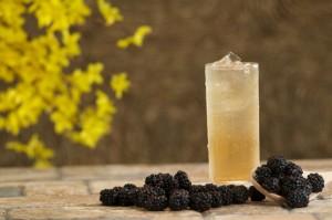 Blackberry Green Jasmine Iced Tea