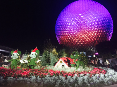 New Year's Eve at Walt Disney World, Part 2