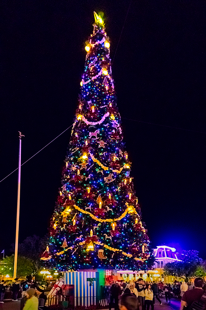 Magic Kingdom Christmas Tree