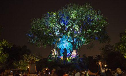 ResortLoop.com Episode 597 – Top 5 Favorite Spots – Disney's Animal Kingdom